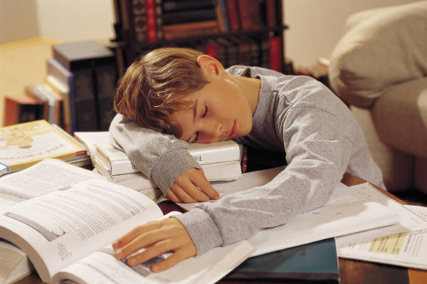 Child exhausted from homework