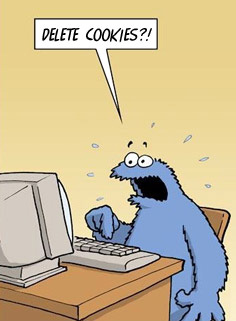 Google Analytics Cookie Monster - Delete cookies!?