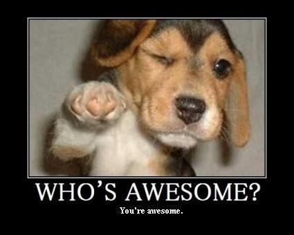Who's Awesome? by John Sloan, on Flickr