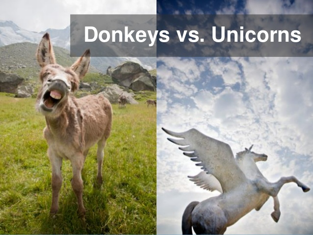 Donkeys versus Unicorns: Image of a donkey and a unicorn.