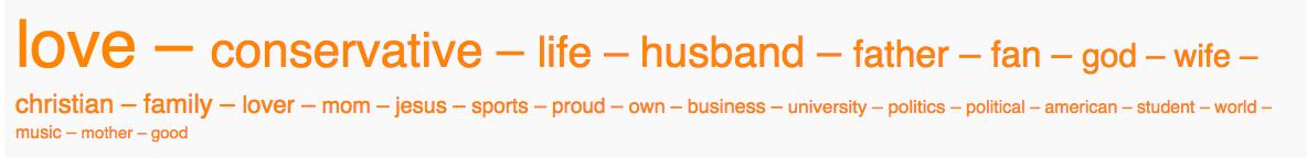 01c - rubio word cloud.png