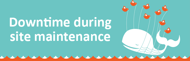 How To Handle Downtime During Site Maintenance - Moz