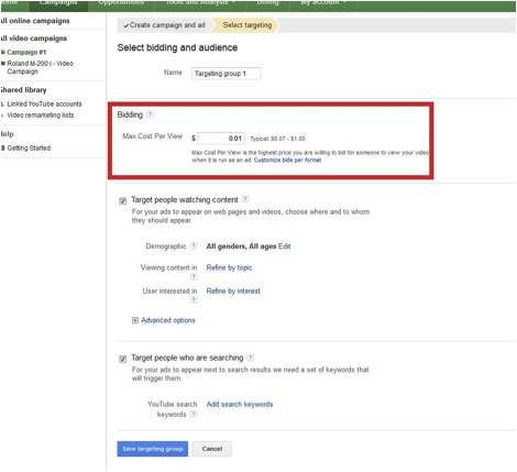 Adwords video campaigns setup page screenshot