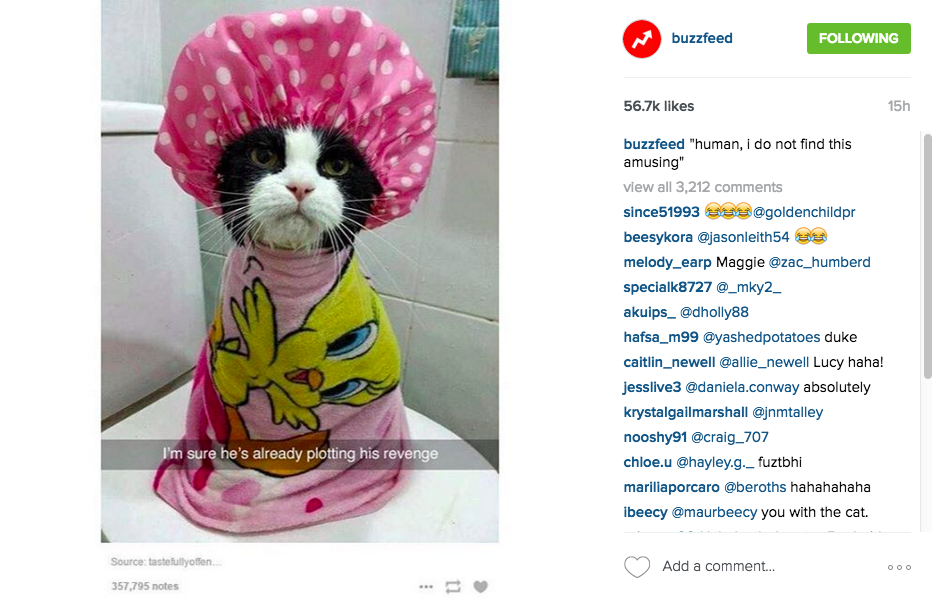 The Buzzfeed Approach to Social Media Strategy - Moz
